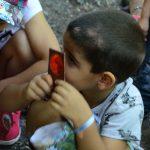 Educazione Ambientale per i più piccoli al Monte Useria (VA) - 13 agosto