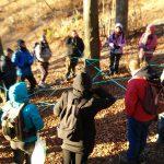 26 novembre: Trekking & Naturopatia: lo Spirito degli Alberi