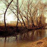 Sabato 9 marzo - La Parma Morta: le antiche foci del torrente Parma