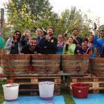 (Italiano) Nonantola: pigiatura dell'uva e degustazione di Aceto Balsamico di Modena