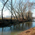 (Italiano) 8 marzo - - La Parma Morta: le antiche foci del torrente Parma