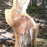 Educazione ambientale a Lagdei - gli animali del bosco