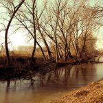 La Parma Morta: le antiche foci del torrente Parma
